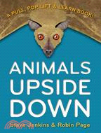 Animals Upside Down ― A Pull, Pop, Lift & Learn Book!