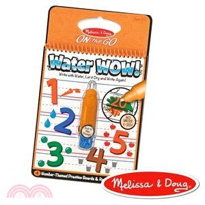 美國瑪莉莎Melissa & Doug 旅遊樂水畫冊 數字學習1-20
