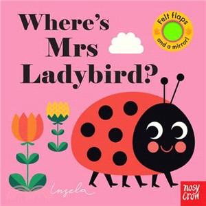 Where's Mrs Ladybird? (Felt Flaps)