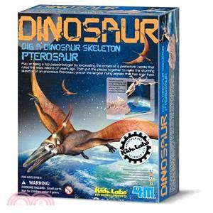 【4M】Pteranodon Skeleton 挖掘翼手龍