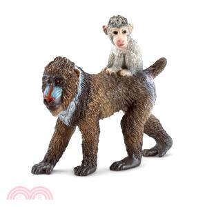 《Schleich》史萊奇模型-狒狒山魈媽媽與寶寶