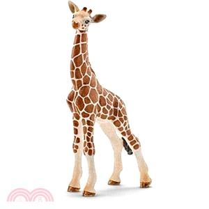 《Schleich》史萊奇模型-長頸鹿寶寶