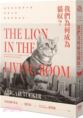 我們為何成為貓奴?:這群食肉動物不僅佔領沙發,更要接管世界